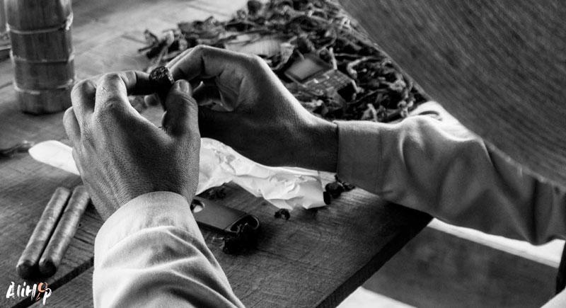 vinales-cigare-cuba-alihop