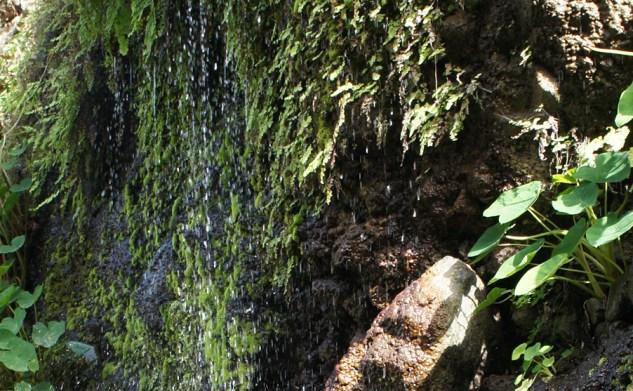 Cap-Vert : Santo Antao #2