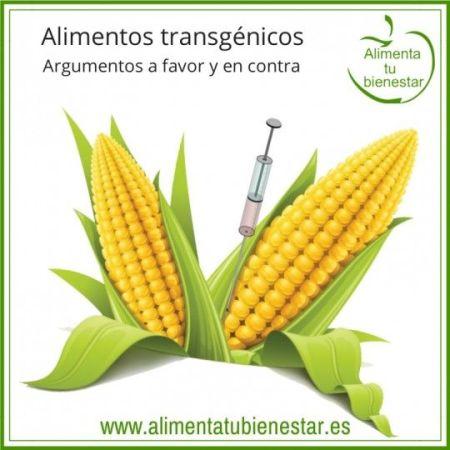 alimentos transgenicos - sin acuerdo