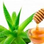 Dile adiós a la gastritis, acidez y úlceras solo con miel y aloe vera