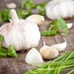 7 ingredientes que te ayudarán a eliminar los parásitos intestinales naturalmente
