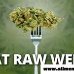 Informe: comer hierbas crudas previene el cáncer de intestino, fibromialgia y enfermedades neurodegenerativas