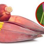 La flor del banano o plátano ayuda a curar problemas en el útero. ¡Descubre como!