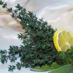 Tomillo, propiedades medicinales, beneficios y usos en remedios caseros