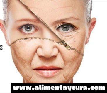 Granada y su papel en la lucha contra el envejecimiento