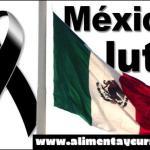 MÉXICO ESTA EN PÁNICO! ENCUENTRAN SEIS CABEZAS HUMANAS EN MICHOACÁN! Y CUANDO TE ENTERES DE QUIEN ERA UNA DE ELLAS QUEDARAS EN SHOCK! QUE TRISTEZA