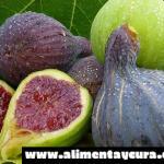 El médico naturista de la familia recomienda esta fruta a diario para combatir la diabetes, los triglicéridos, el colesterol y cicatrizar las úlceras estomacales.