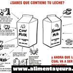 ¿Sabes que contiene la leche de vaca?