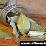 Quema hojas de laurel en la casa y ve lo que ocurre en sólo 10 minutos!