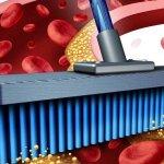 17 mejores alimentos y hierbas para limpiar la sangre