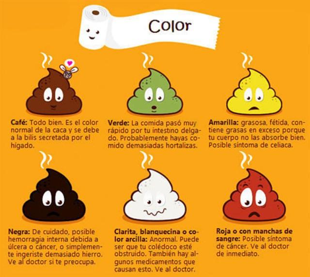 color-de-las-heces