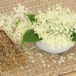 Cómo mejorar la circulación sanguínea con 5 remedios herbales