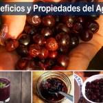 Propiedades del agraz y los beneficios de su capacidad antioxidante
