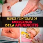Signos Y Síntomas De Emergencia De La Apendicitis