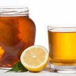 Propiedades y beneficios del té de kombucha