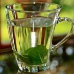 5 infusiones herbales para limpiar las arterias naturalmente