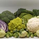 Glucosinolatos: ¿defensas vegetales o batallón contra el cáncer?
