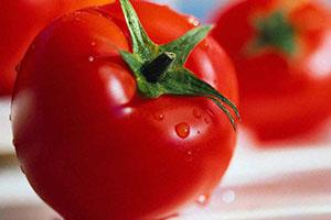 alimentos con liquidos para mejorar la salud