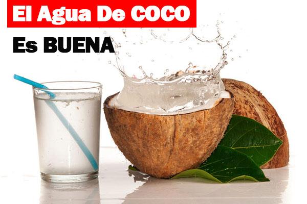 el agua de coco es buena
