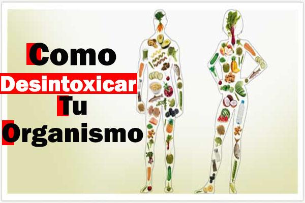 Como desintoxicar tu organismo