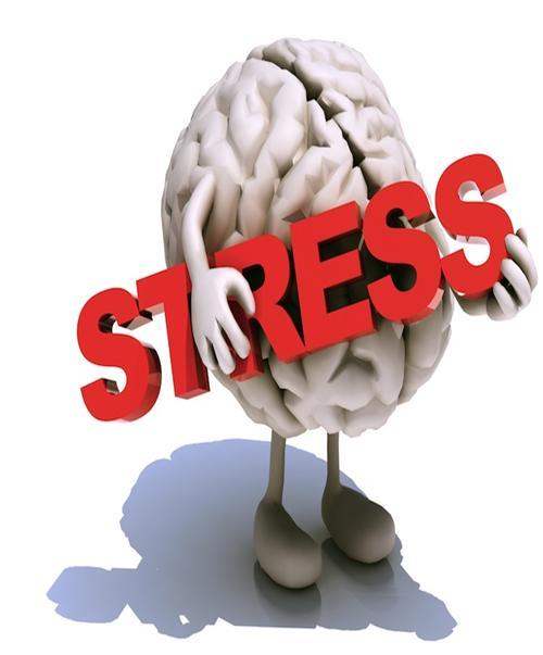 Descopera metodele de eliminare a stresului care functioneaza pentru tine