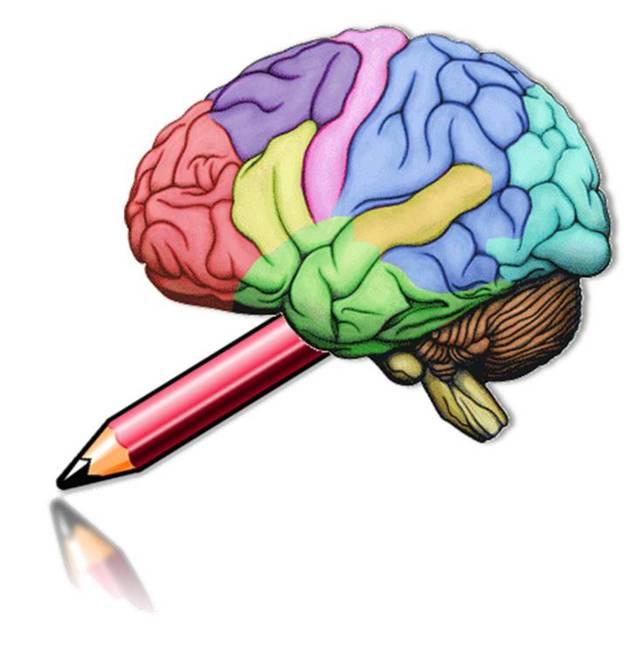 Top 10 lucruri interesante despre creierul tau