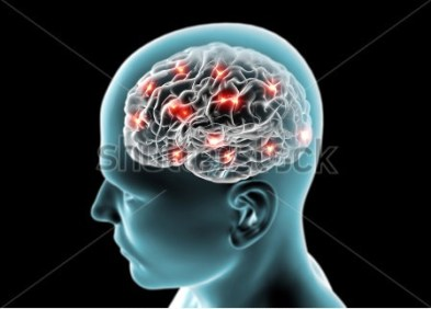 stock-photo-brain-neurons-synapses-reasoning-159823838