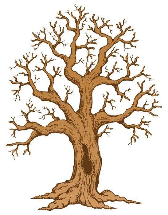 Deseneaza un copac si afla cine esti – Testul Baum