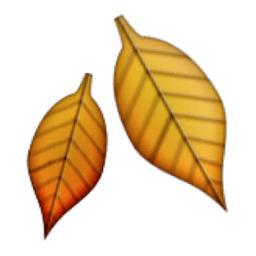 fallen-leaf.png