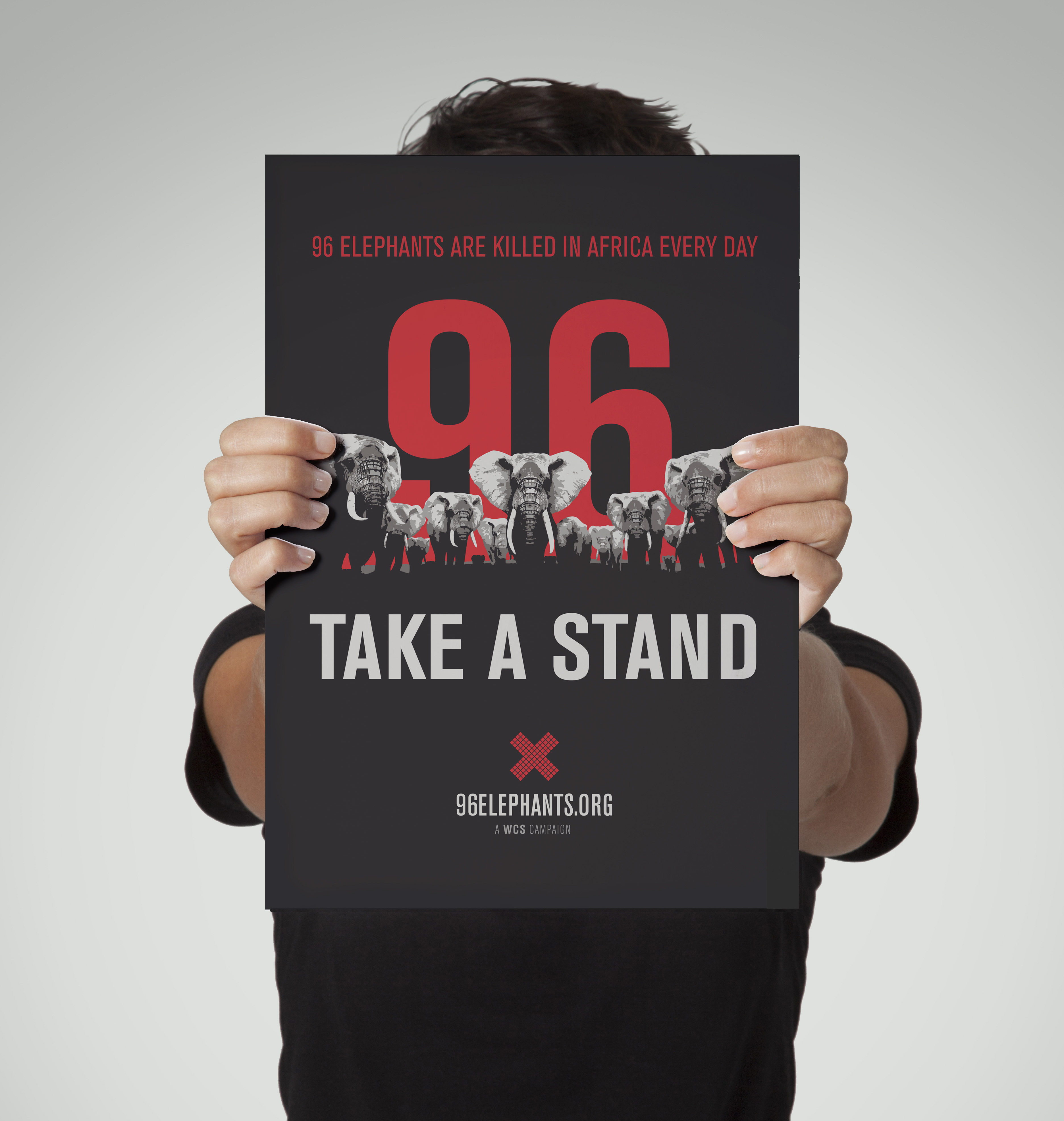 Take a Stand for Elephants Poster