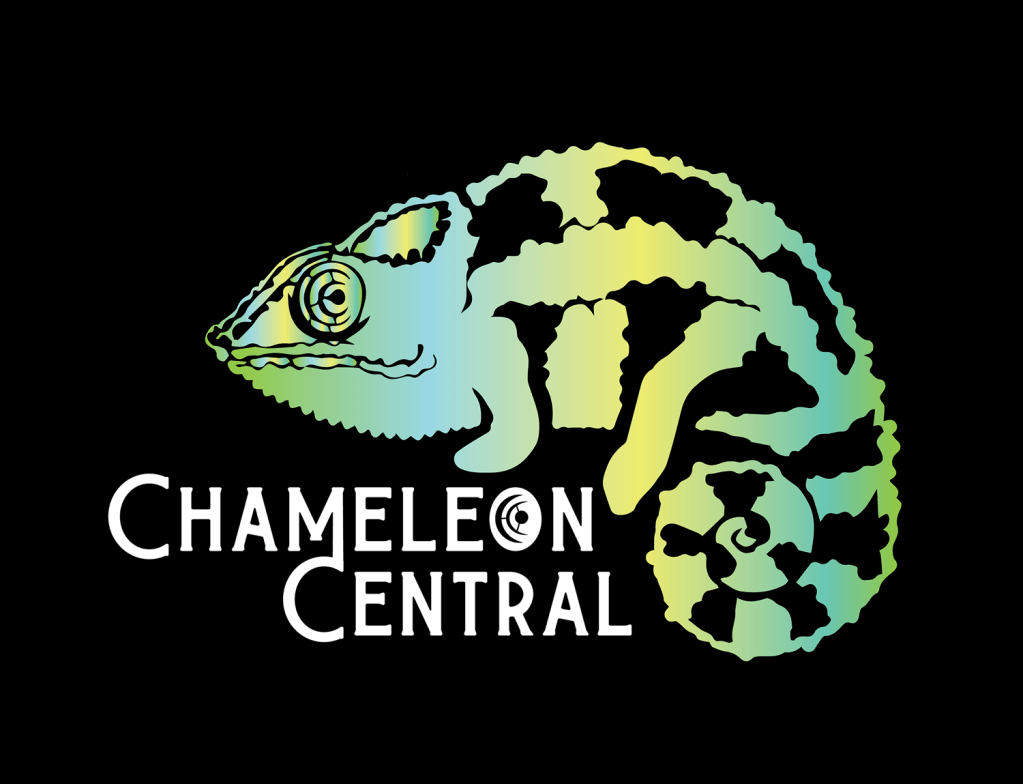 Cham Central Logo with Gradient Background
