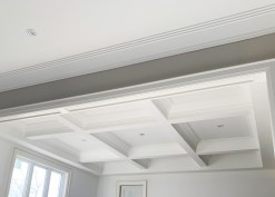 Alinca-wainscoting-ceiling-2