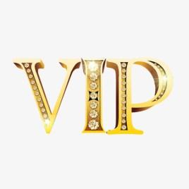 V3 VIP hosting