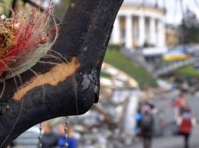 Kiev, Maidan, April, 15. 2014