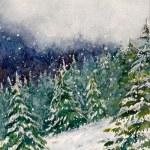 Winter's Snow