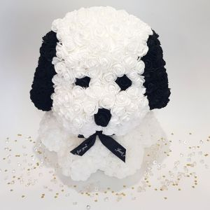 White rose dog with ears