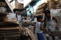Cardboard Recycling in Dharavi
