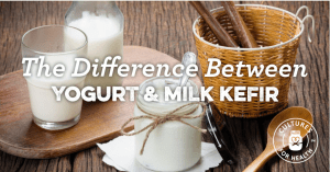 The Difference Between Kefir and Yogurt from CulturesforHealth.com