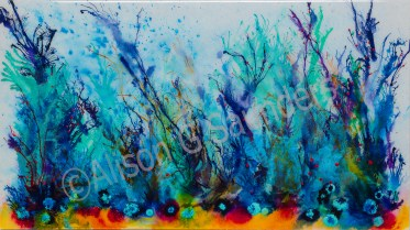 1251colourful coral watermarked