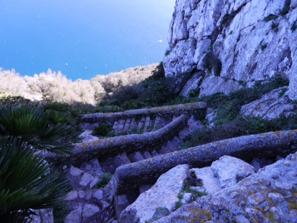 Zigzag steps