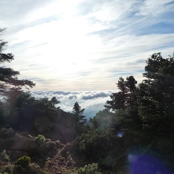 Above the clouds Sierra Bermeja