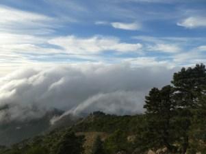 Summit of the Sierra Bermeja