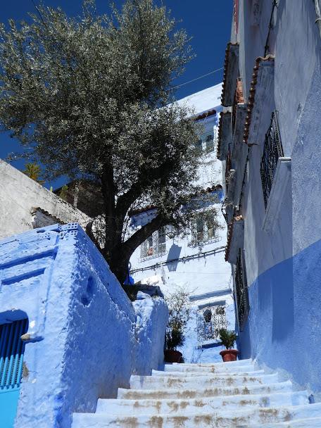 Blue steps in Chefchaouen Medina