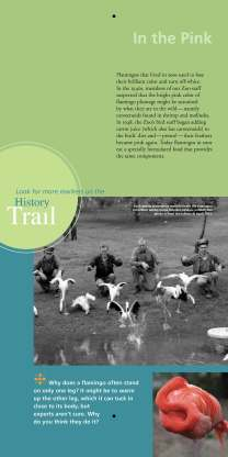 Zoo history trail 10