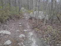 pinehills rocks