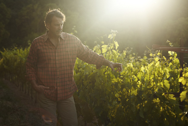 Renowned Cardinale winemaker Christopher Carpenter in the vineyard