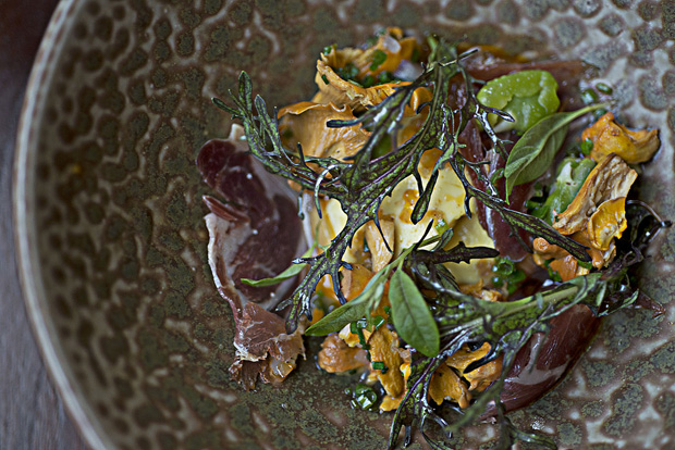 Princeton chanterelles with garganelli, poached egg, parmesan.  Photography by Jenna Davila.