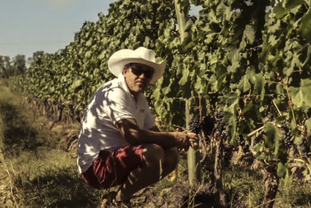 Winemaker Roberto  at the Achaval-Ferrer vineyards