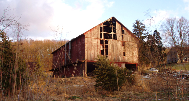 An abandoned barn that was eventually re-purposed into beautiful building materials