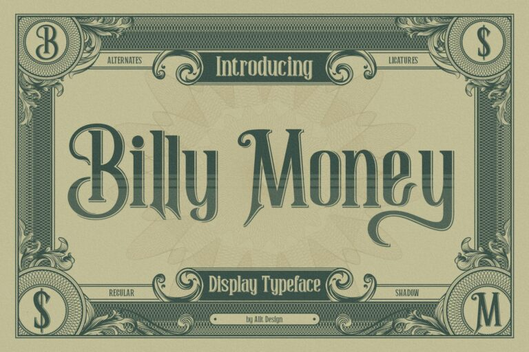 Preview image of Billy Money